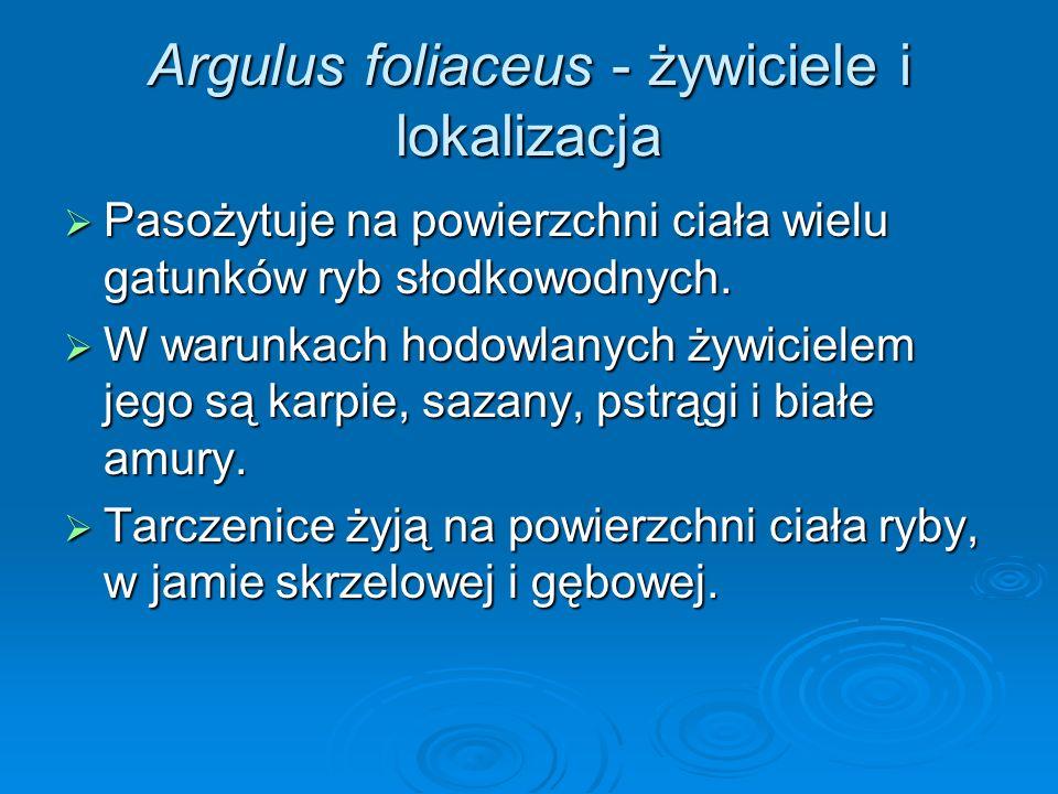 Argulus foliaceus - żywiciele i lokalizacja