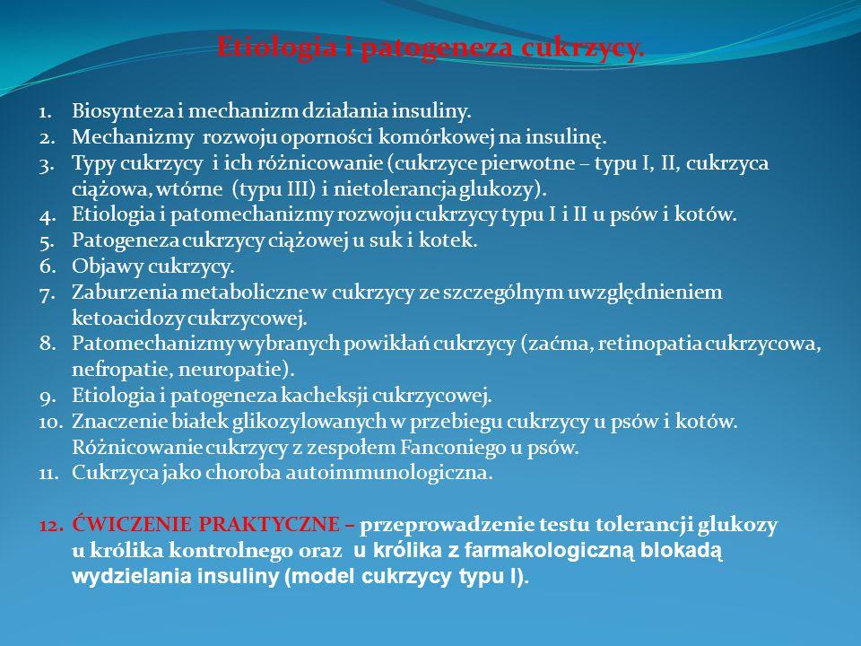 Etiologia i patogeneza cukrzycy.