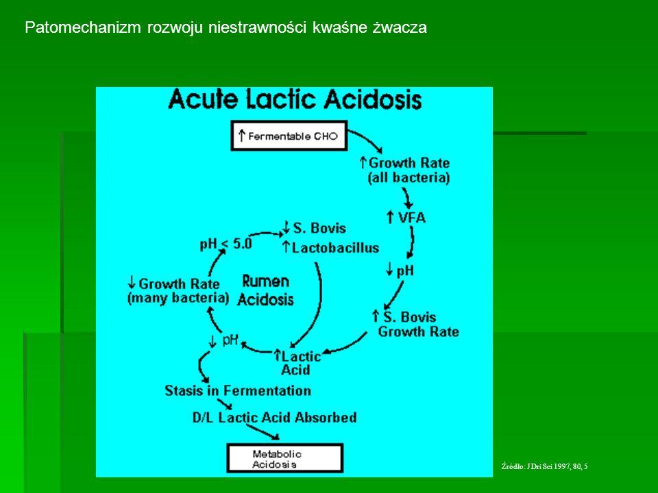 Patomechanizm rozwoju niestrawności kwaśne żwacza