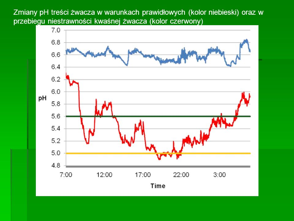 Zmiany pH treści żwacza w warunkach prawidłowych (kolor niebieski) oraz w przebiegu niestrawności kwaśnej żwacza (kolor czerwony)