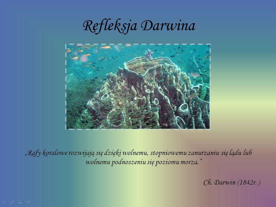 """Refleksja Darwina """"Rafy koralowe rozwijają się dzięki wolnemu, stopniowemu zanurzaniu się lądu lub wolnemu podnoszeniu się poziomu morza."""