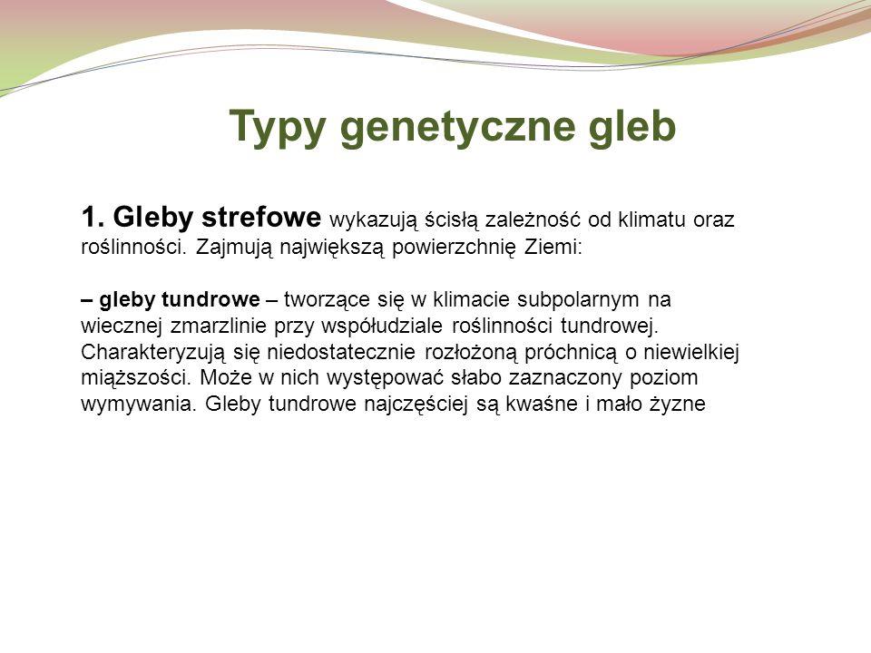 Typy genetyczne gleb