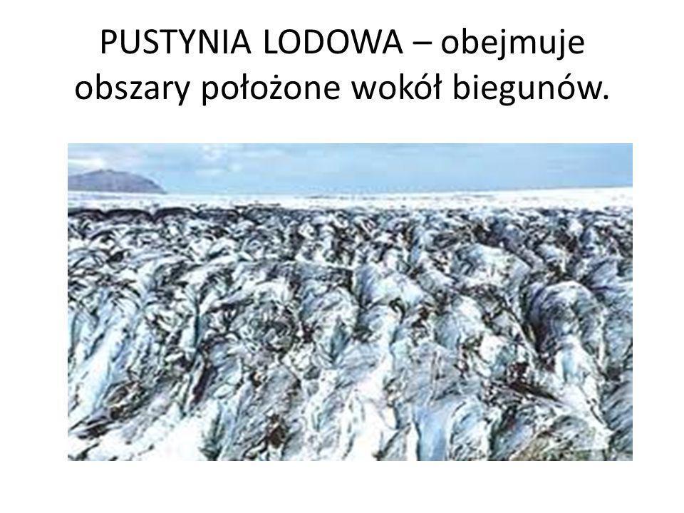 PUSTYNIA LODOWA – obejmuje obszary położone wokół biegunów.