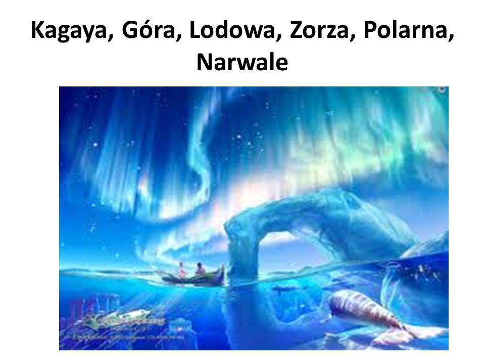 Kagaya, Góra, Lodowa, Zorza, Polarna, Narwale