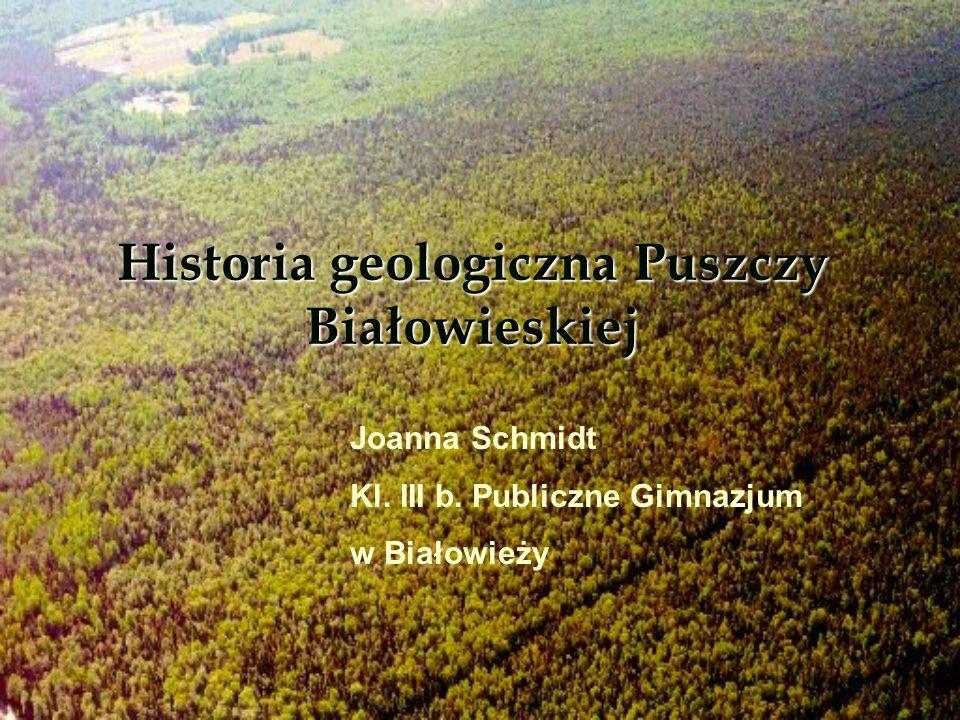 Historia geologiczna Puszczy Białowieskiej
