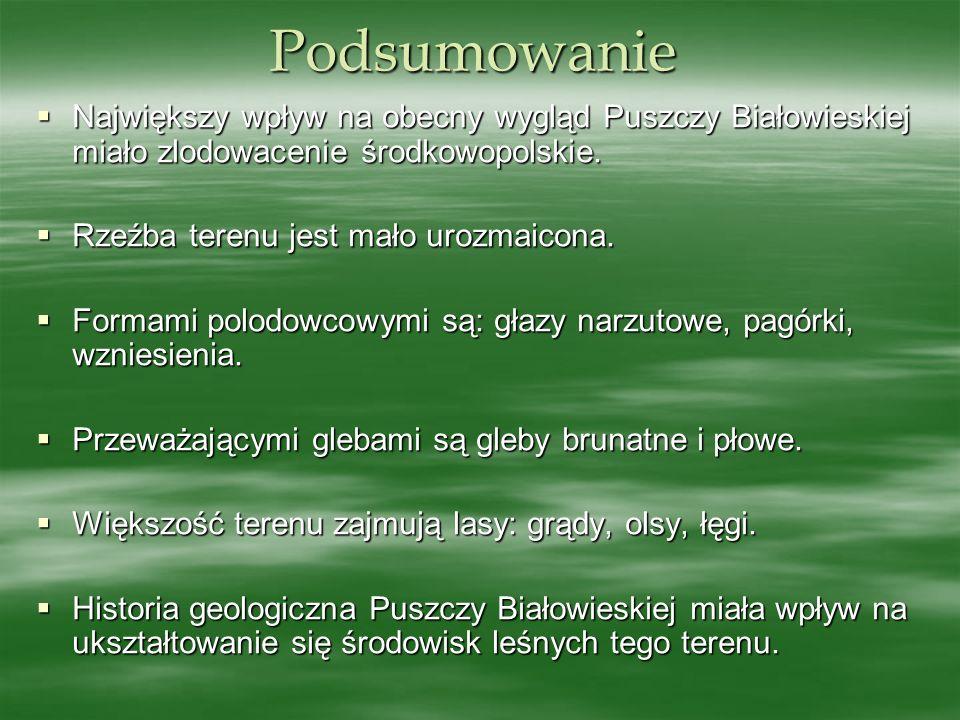 Podsumowanie Największy wpływ na obecny wygląd Puszczy Białowieskiej miało zlodowacenie środkowopolskie.