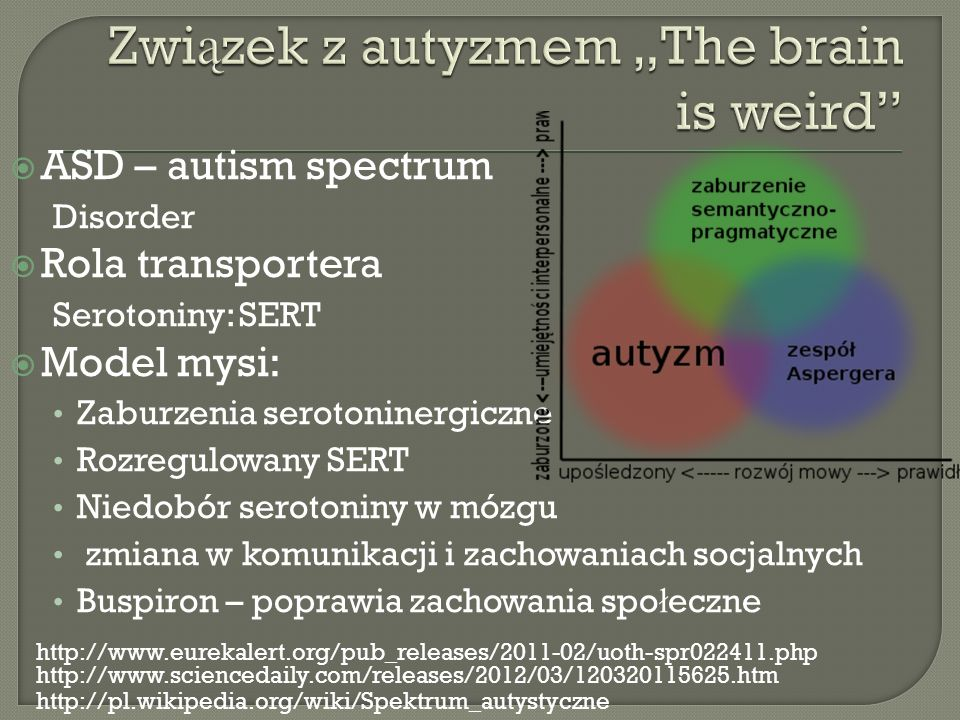 "Związek z autyzmem ""The brain is weird"