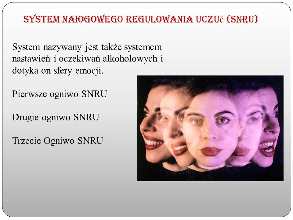 System nałogowego regulowania uczuć (SNRU)