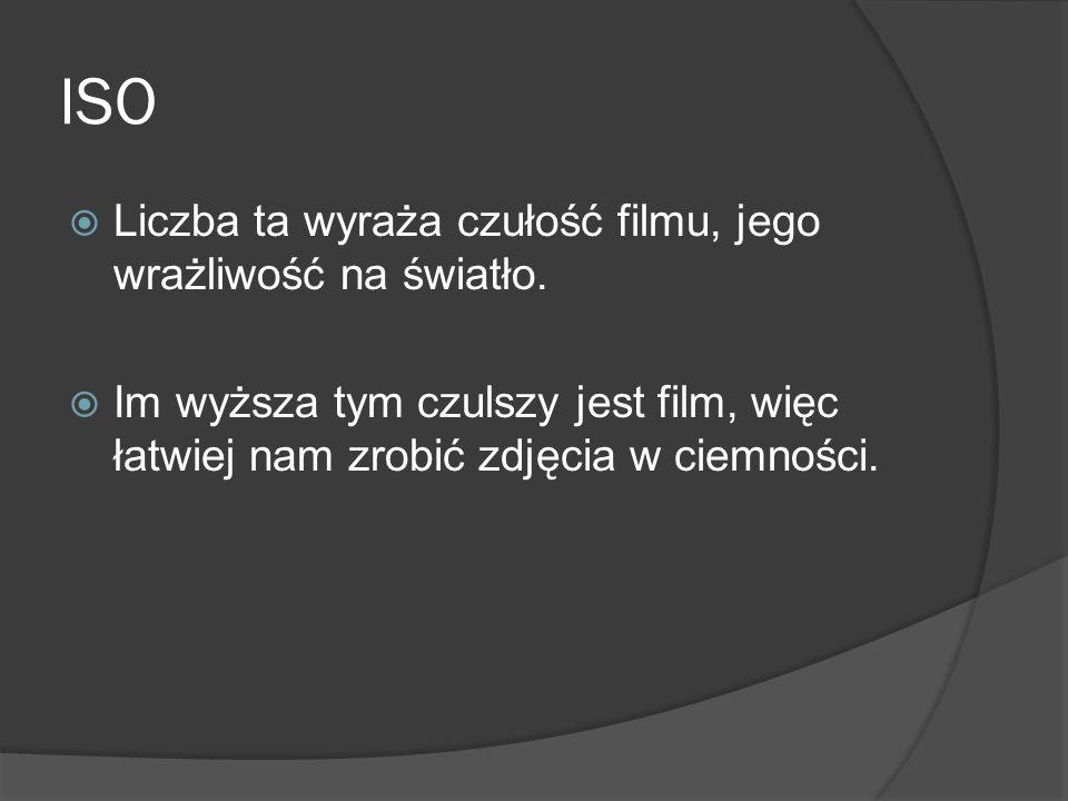 ISO Liczba ta wyraża czułość filmu, jego wrażliwość na światło.