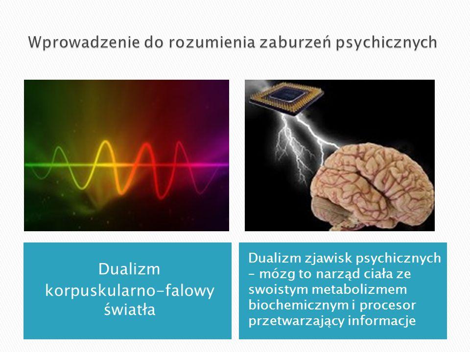 Wprowadzenie do rozumienia zaburzeń psychicznych