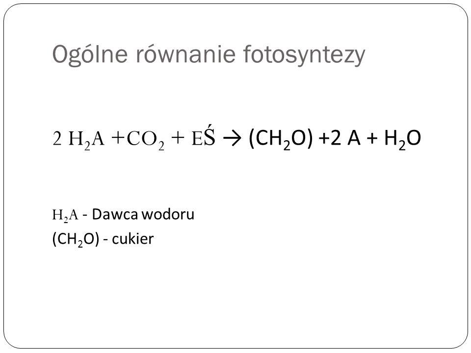 Ogólne równanie fotosyntezy