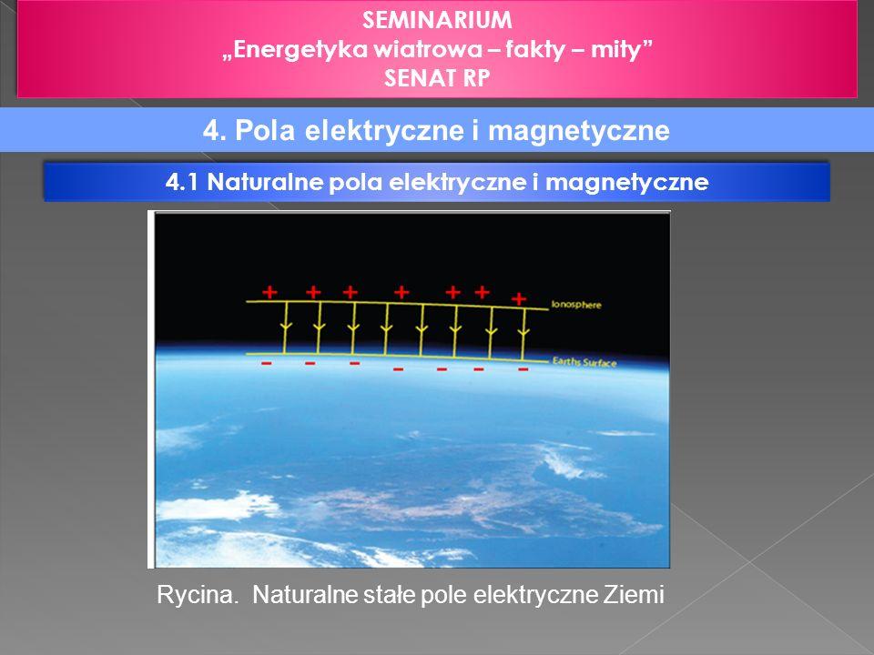 4. Pola elektryczne i magnetyczne