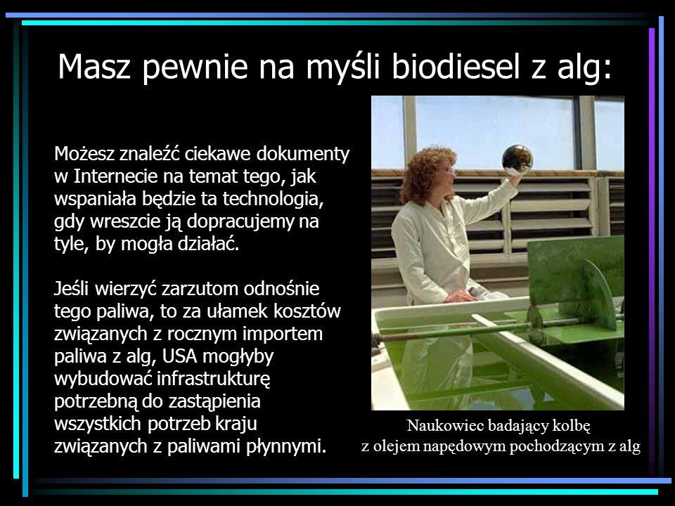 Masz pewnie na myśli biodiesel z alg: