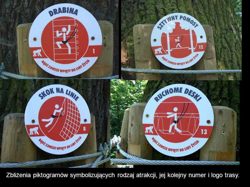 Zbliżenia piktogramów symbolizujących rodzaj atrakcji, jej kolejny numer i logo trasy.