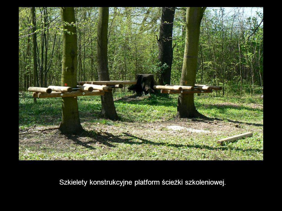 Szkielety konstrukcyjne platform ścieżki szkoleniowej.