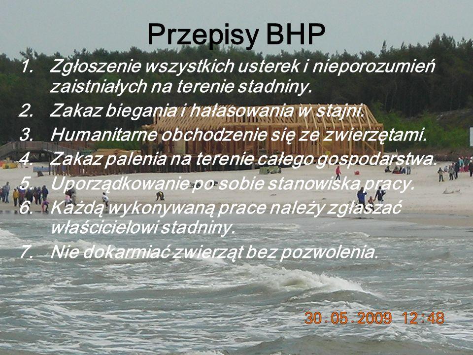 Przepisy BHP Zgłoszenie wszystkich usterek i nieporozumień zaistniałych na terenie stadniny. Zakaz biegania i hałasowania w stajni.