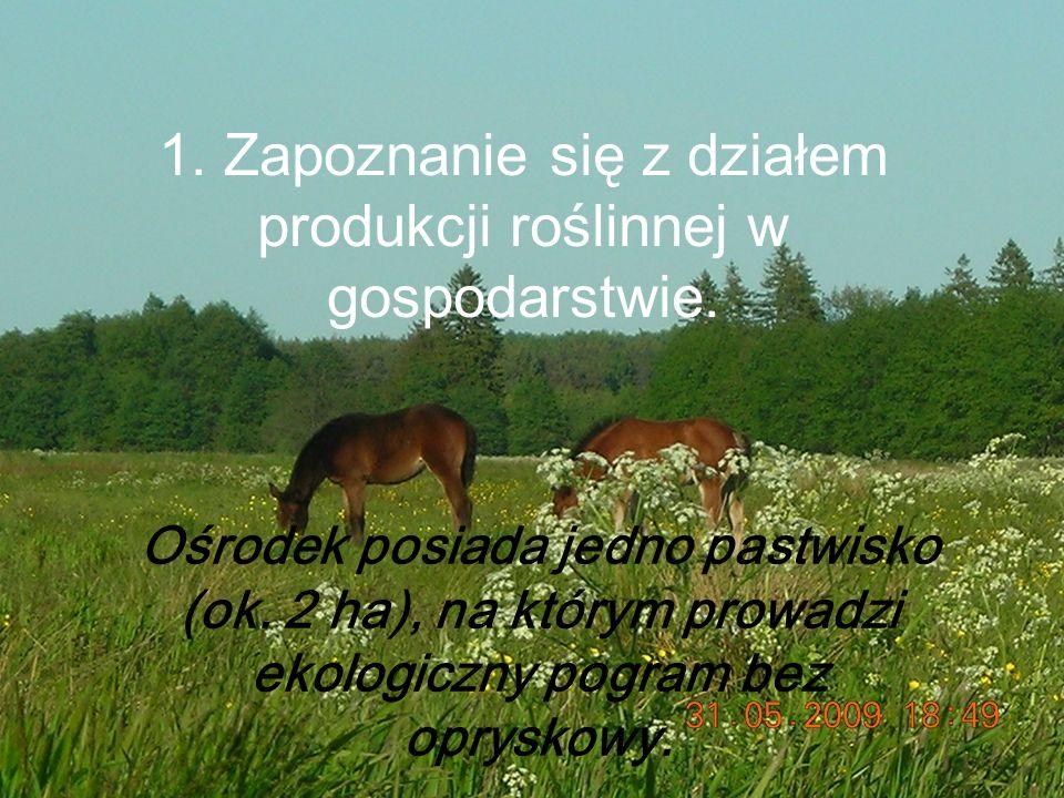 1. Zapoznanie się z działem produkcji roślinnej w gospodarstwie.