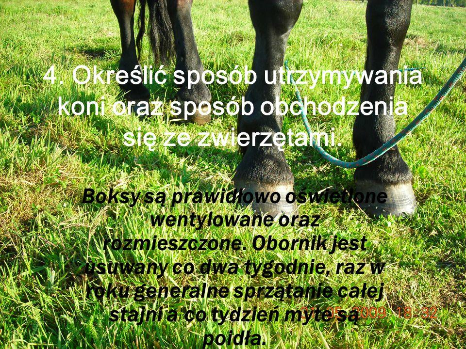 4. Określić sposób utrzymywania koni oraz sposób obchodzenia się ze zwierzętami.