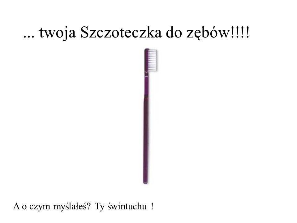 ... twoja Szczoteczka do zębów!!!!