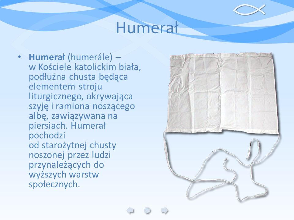 Humerał