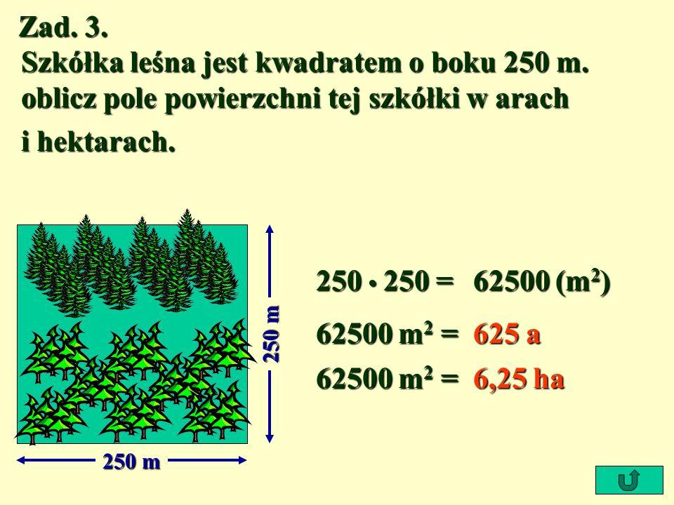 Zad. 3. Szkółka leśna jest kwadratem o boku 250 m. oblicz pole powierzchni tej szkółki w arach. i hektarach.