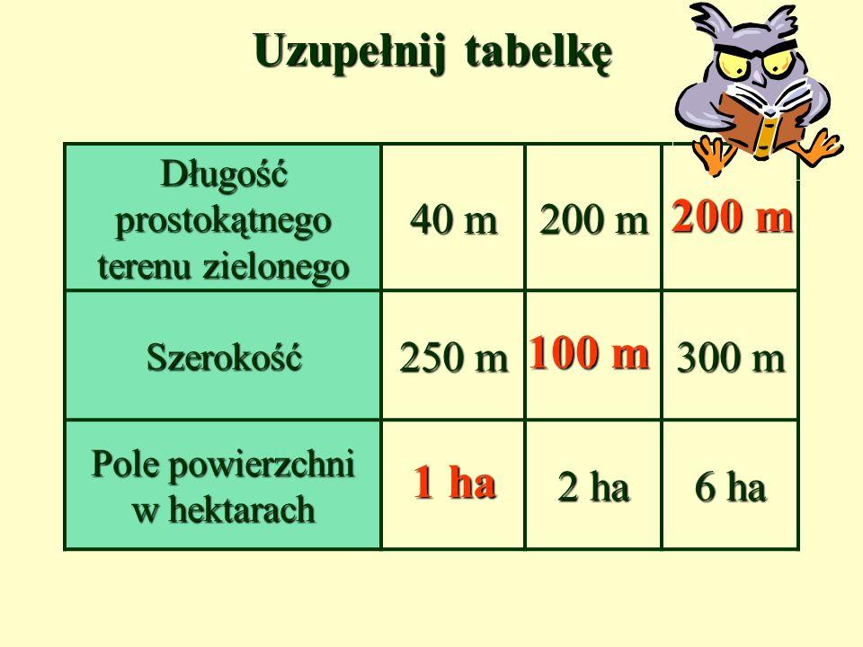 Uzupełnij tabelkę 200 m 100 m 1 ha 40 m 200 m 250 m 300 m 2 ha 6 ha