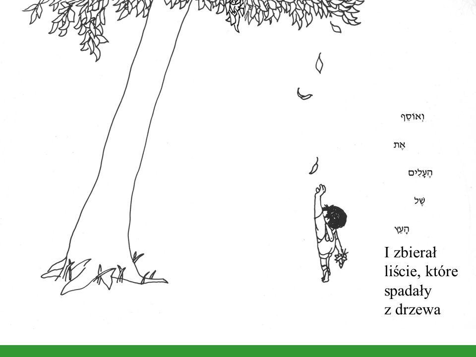 I zbierał liście, które spadały z drzewa