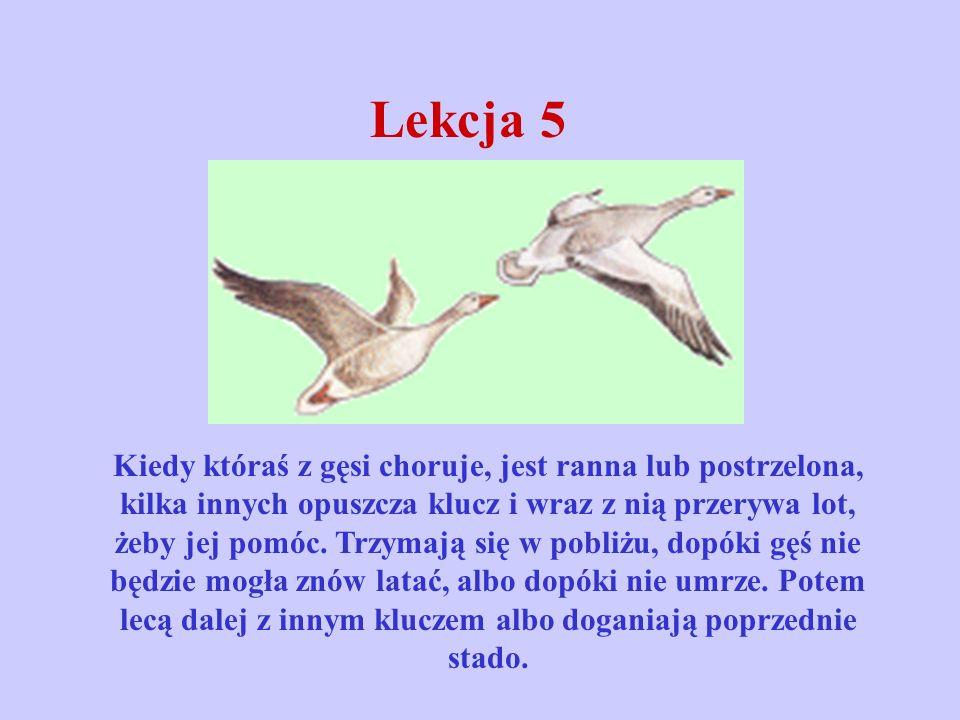 Lekcja 5
