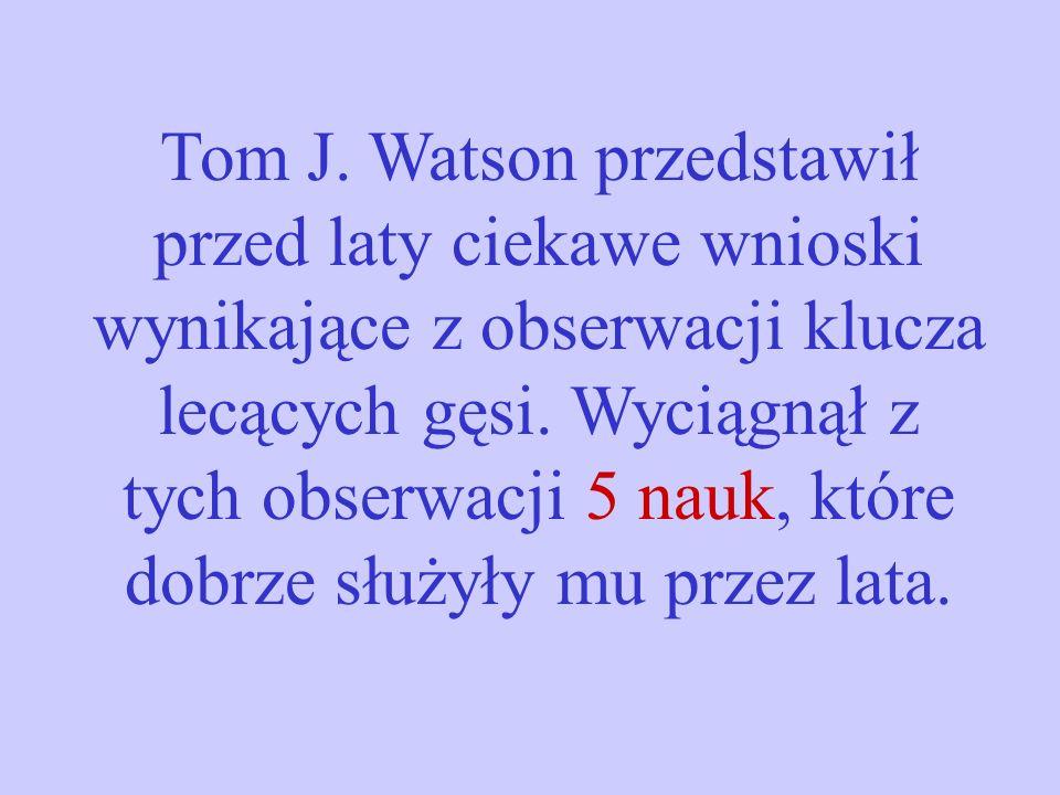 Tom J.Watson przedstawił przed laty ciekawe wnioski wynikające z obserwacji klucza lecących gęsi.