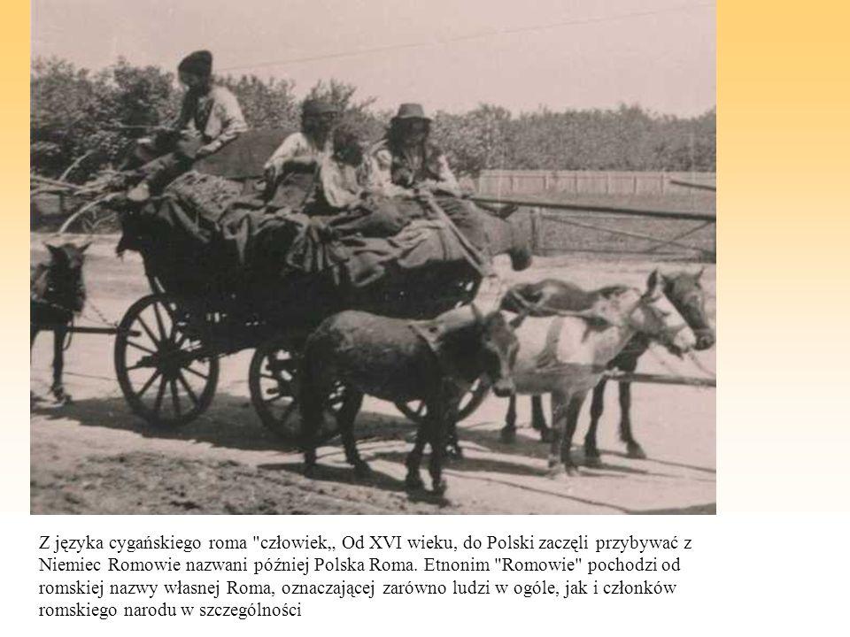 """Z języka cygańskiego roma człowiek"""" Od XVI wieku, do Polski zaczęli przybywać z Niemiec Romowie nazwani później Polska Roma."""