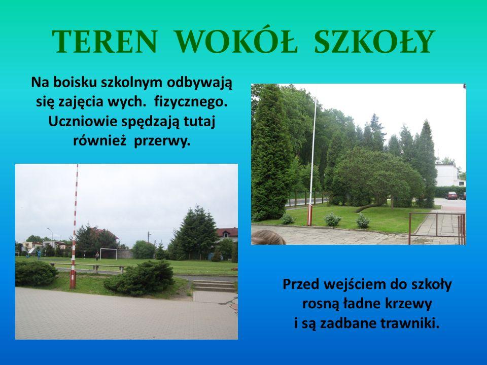 Przed wejściem do szkoły rosną ładne krzewy i są zadbane trawniki.