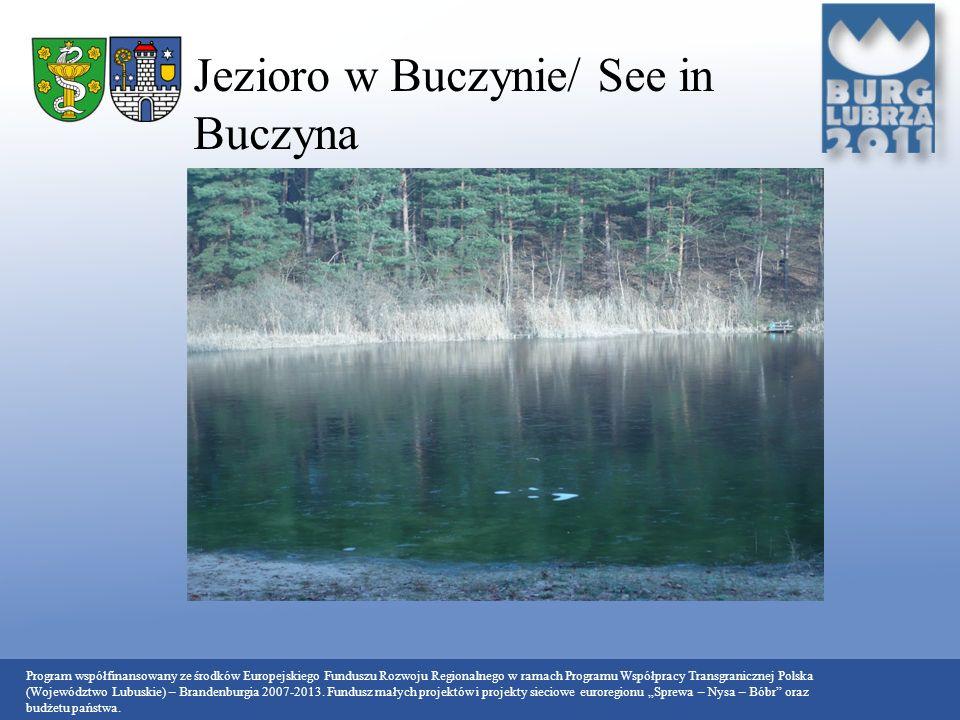 Jezioro w Buczynie/ See in Buczyna