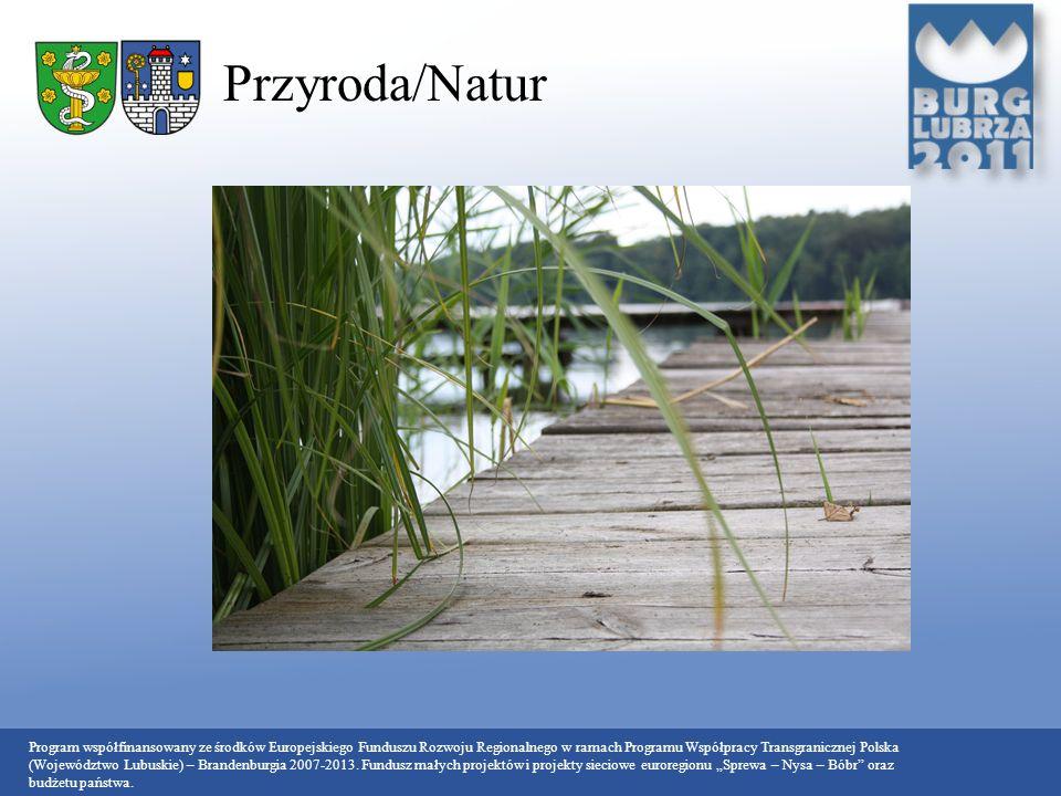 Przyroda/Natur