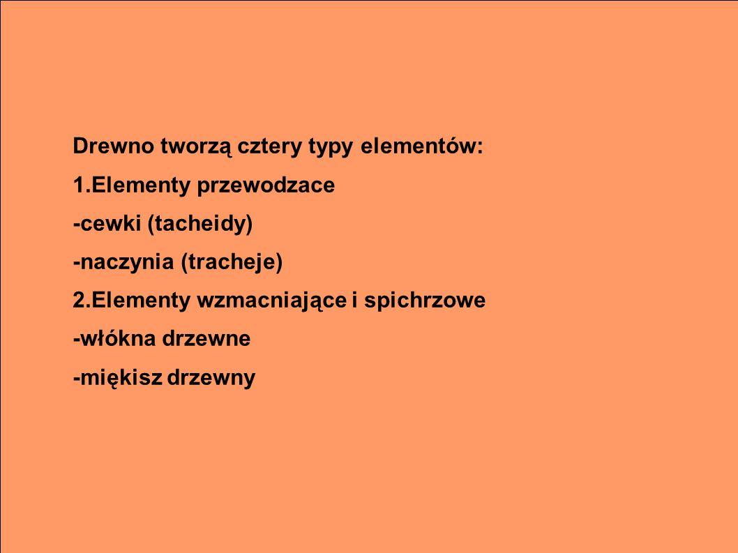 Drewno tworzą cztery typy elementów: