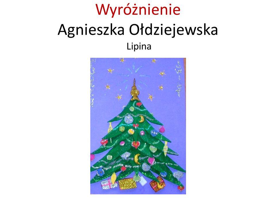 Wyróżnienie Agnieszka Ołdziejewska Lipina