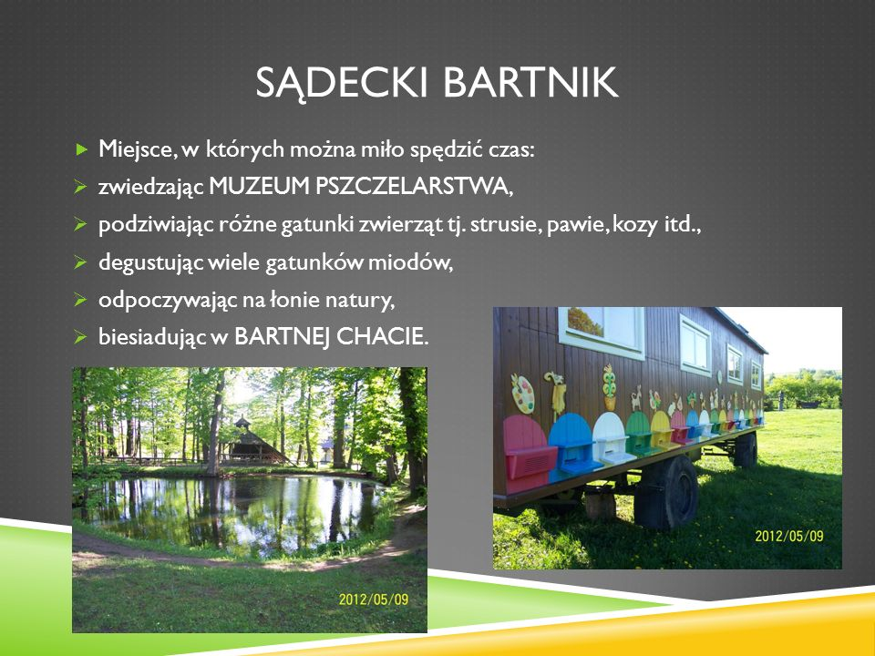 Sądecki Bartnik Miejsce, w których można miło spędzić czas: