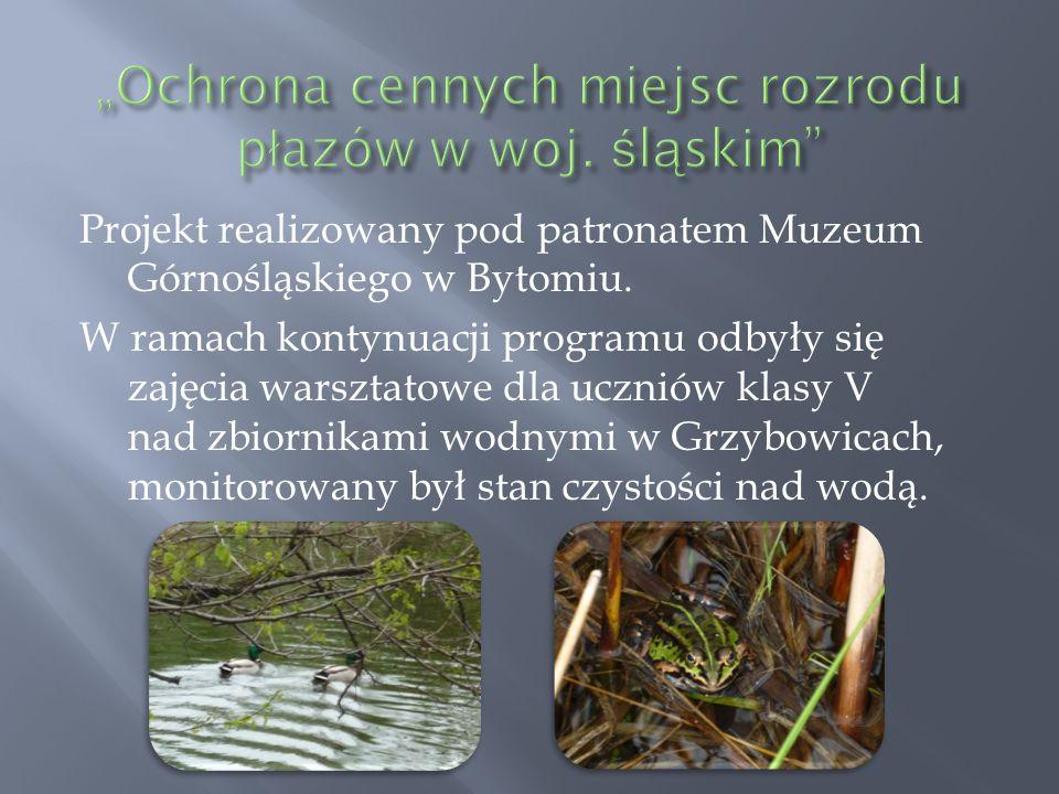 """""""Ochrona cennych miejsc rozrodu płazów w woj. śląskim"""
