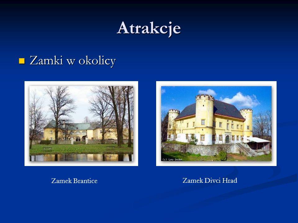 Atrakcje Zamki w okolicy Zamek Brantice Zamek Divci Hrad