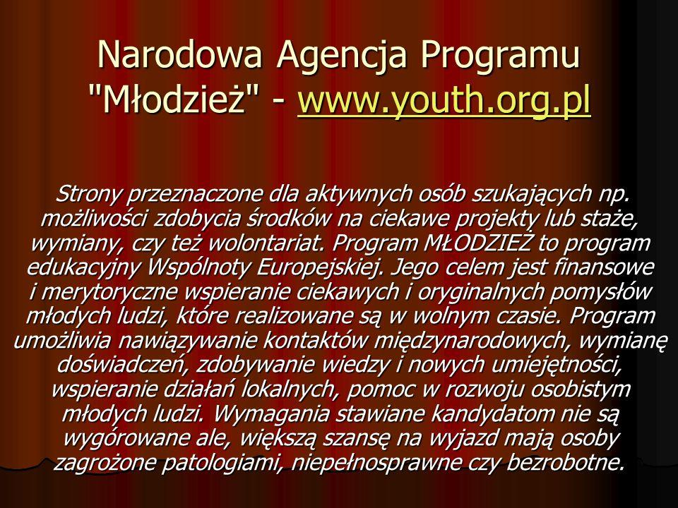 Narodowa Agencja Programu Młodzież - www.youth.org.pl