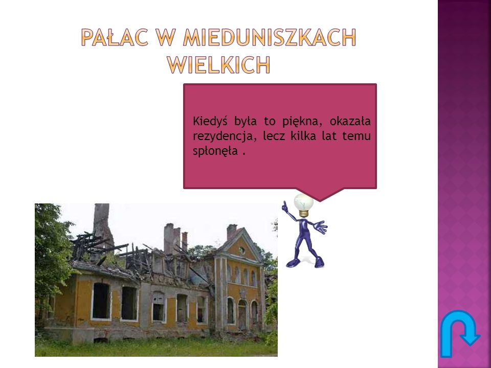 Pałac w mieduniszkach wielkich