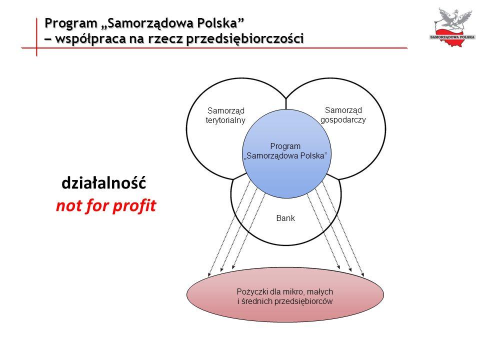 """działalność not for profit Program """"Samorządowa Polska"""