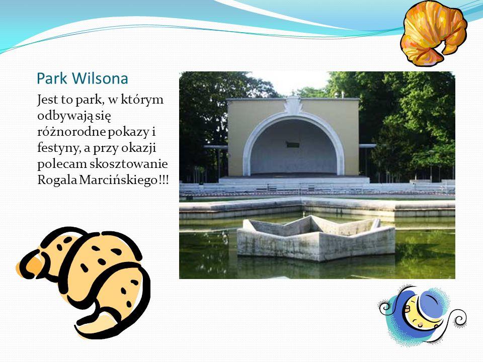 Park WilsonaJest to park, w którym odbywają się różnorodne pokazy i festyny, a przy okazji polecam skosztowanie Rogala Marcińskiego!!!