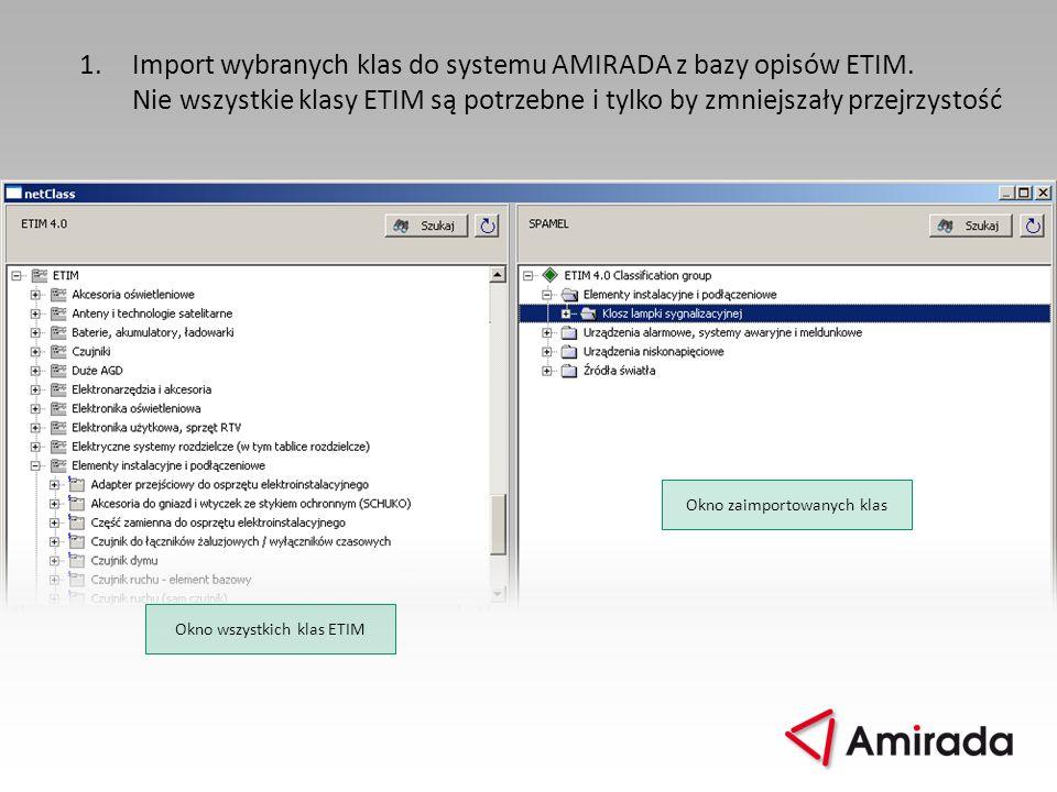 1. Import wybranych klas do systemu AMIRADA z bazy opisów ETIM.