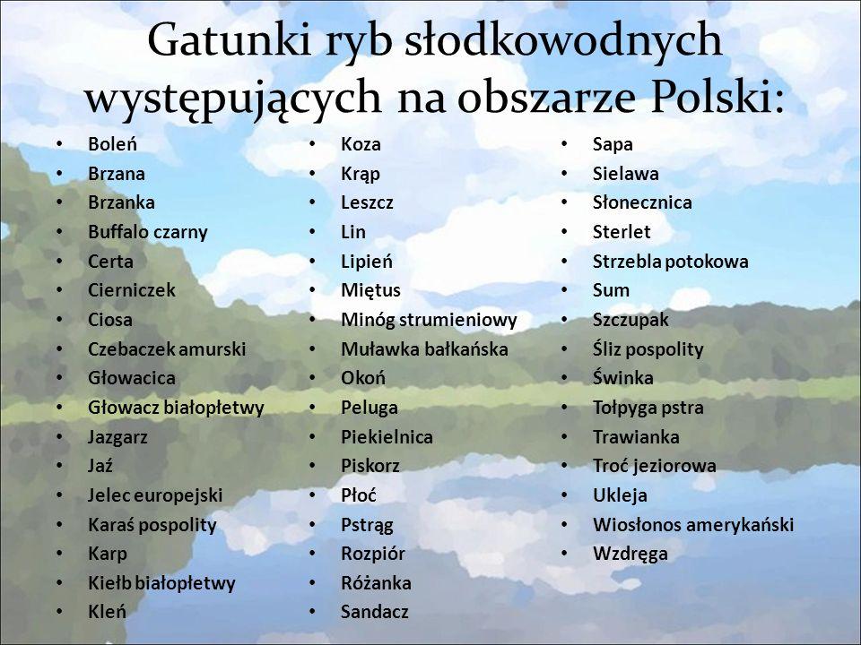 Gatunki ryb słodkowodnych występujących na obszarze Polski:
