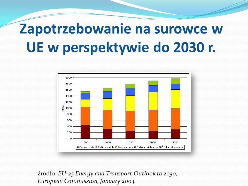 Zapotrzebowanie na surowce w UE w perspektywie do 2030 r.