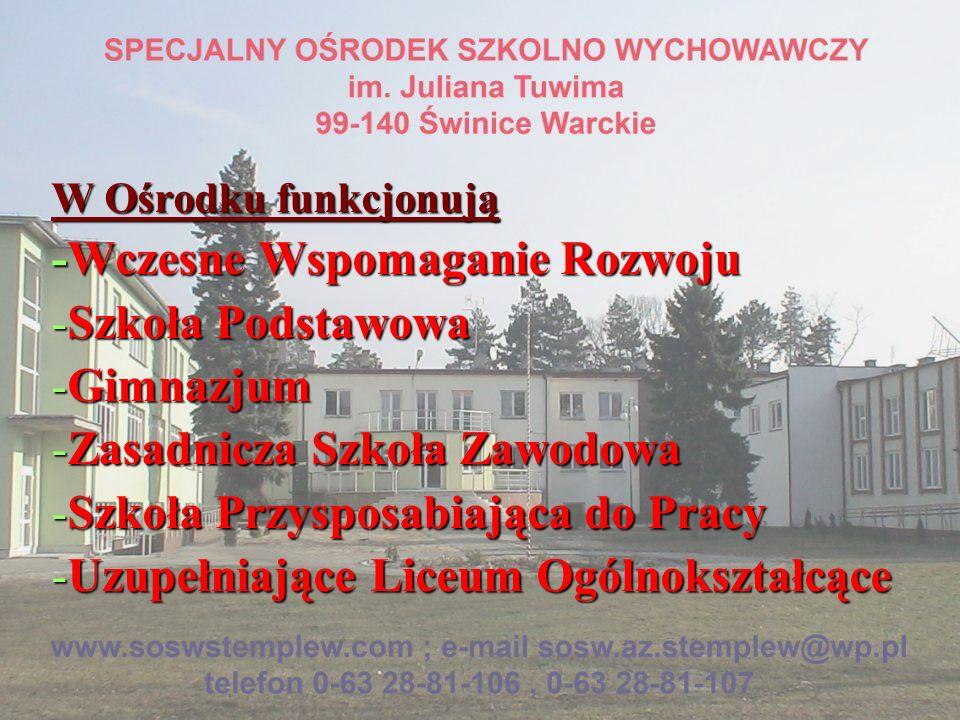 -Wczesne Wspomaganie Rozwoju Szkoła Podstawowa Gimnazjum