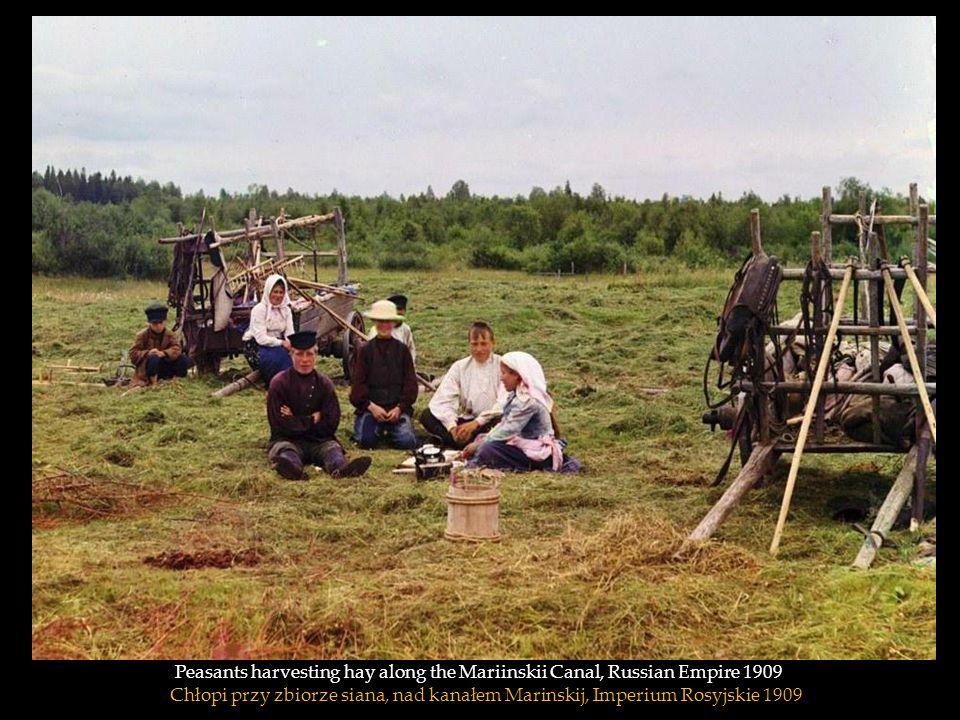 Peasants harvesting hay along the Mariinskii Canal, Russian Empire 1909 Chłopi przy zbiorze siana, nad kanałem Marinskij, Imperium Rosyjskie 1909