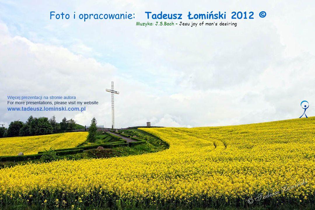 Foto i opracowanie: Tadeusz Łomiński 2012 ©
