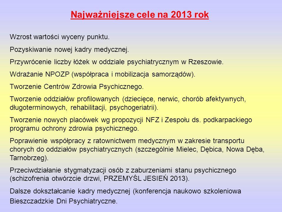 Najważniejsze cele na 2013 rok