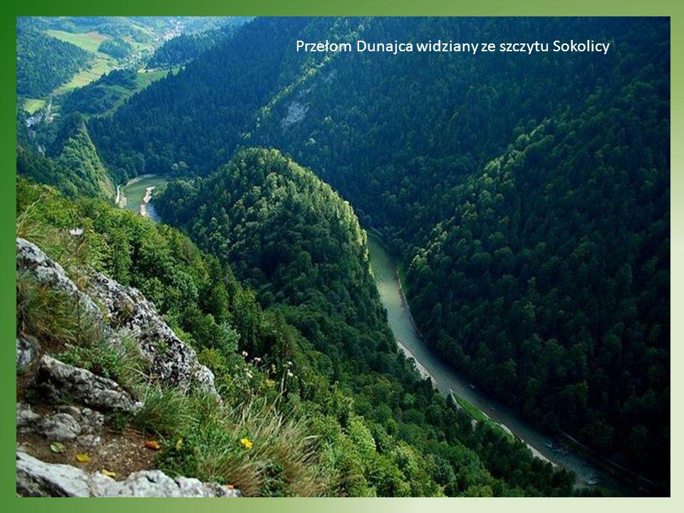 Przełom Dunajca widziany ze szczytu Sokolicy